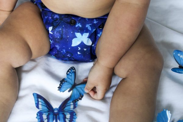 Cloth Diaper Little Wings 4